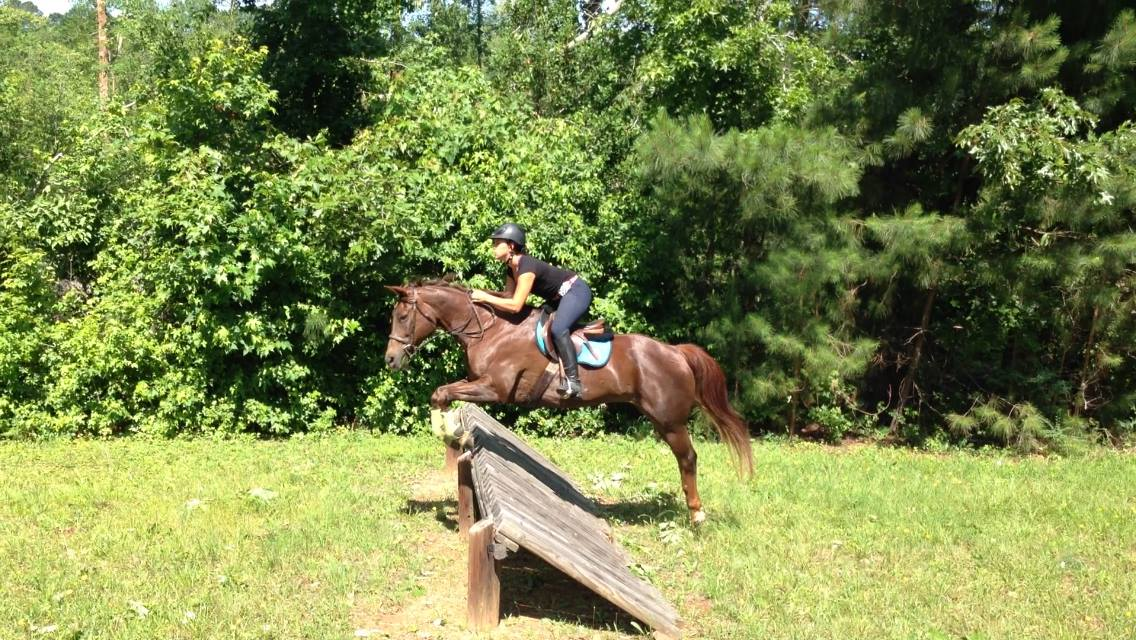 Summer Camps Southern Oak Equestrian Center